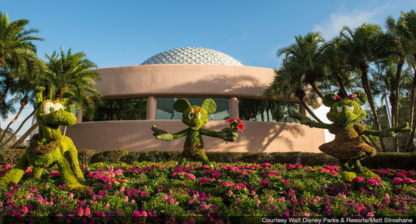 Disney-epcot-garden