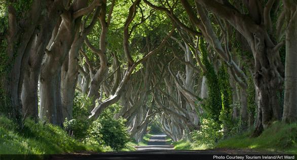 northern-ireland-game-of-thrones-tourism