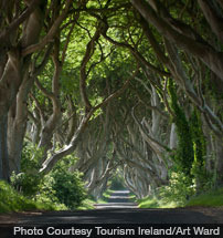 northern-ireland-game-of-thrones-tourism